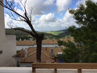 view from Prado